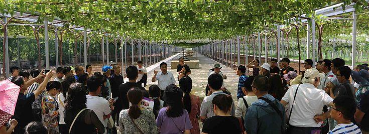 Exkursion im Weinbauerlebnispark