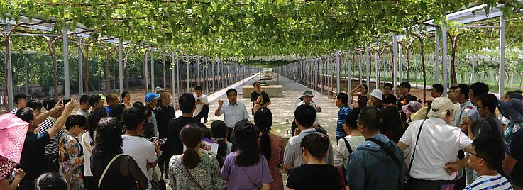 2019年:西安暑期学校
